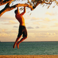 outdoor-action-pull-up-tree-beach-kSY5qf-20102011